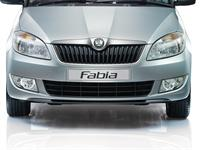 Chrome Surround Radiator Grille